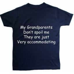 My Grandparents don't spoil me...Baby, Childrens T-Shirt