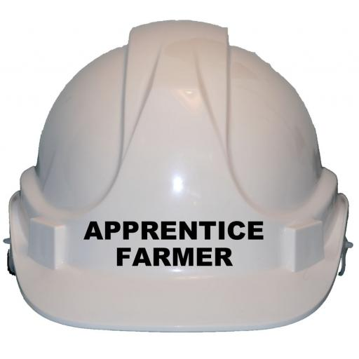 Apprentice Farmer Childrens Kids Hard Hat Safety Helmet