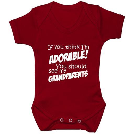 Adorable...Grandparents...Baby Grow, Bodysuit, Romper