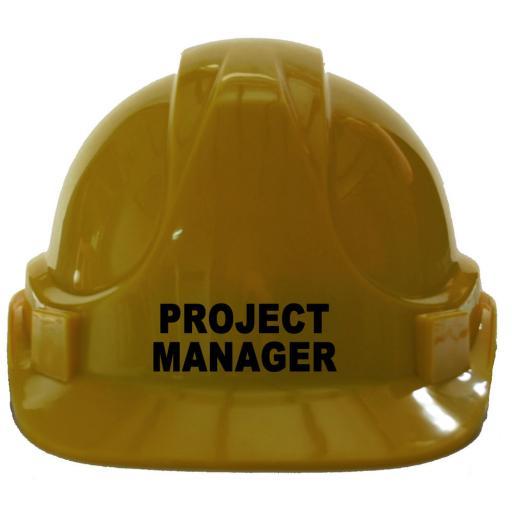 Project Manager Children Kids Hard Hat Safety Helmet
