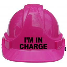 I'm in charge Pink.jpg